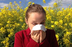 Alergia y Rinitis Alérgica