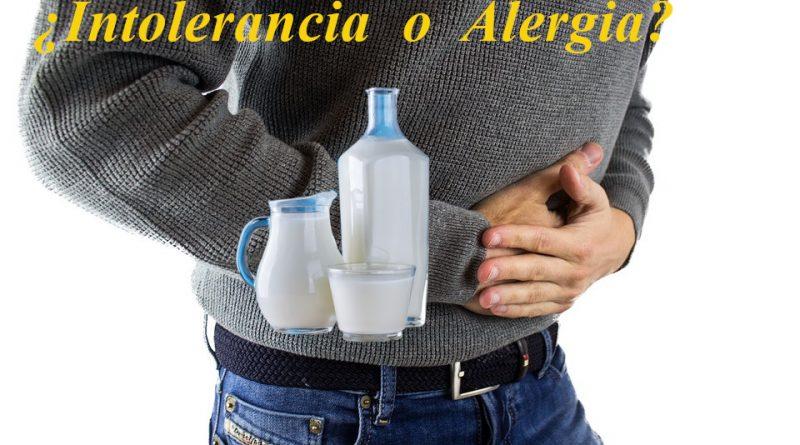 ¿Intolerancia o Alergia a la Lactosa?