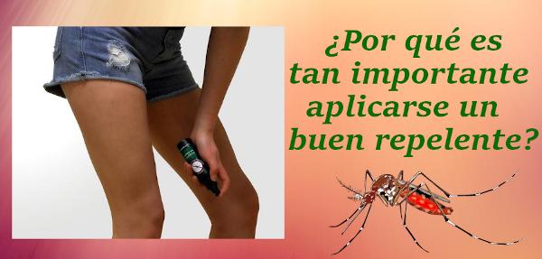 ¿Qué hacer frente a las picaduras de mosquitos?